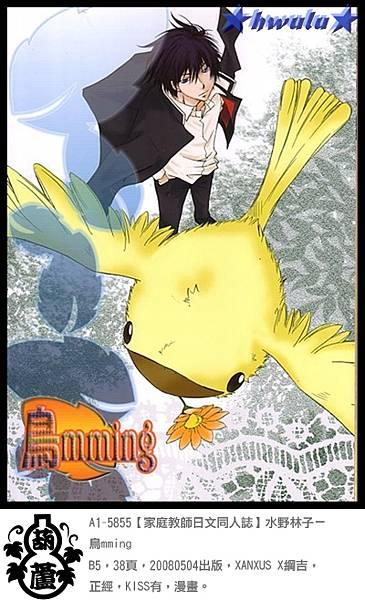 A1-5855【家庭教師日文同人誌】水野林子-鳥mming