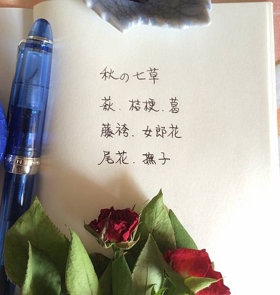 20160901_03.JPG