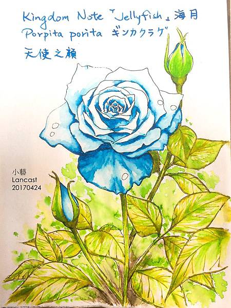 20170510a 玫瑰%26;墨水