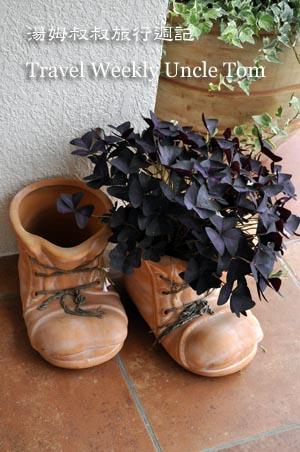 s鞋.jpg