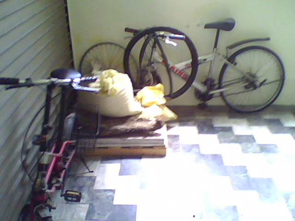 畜生家冰山一角的腳踏車.jpg