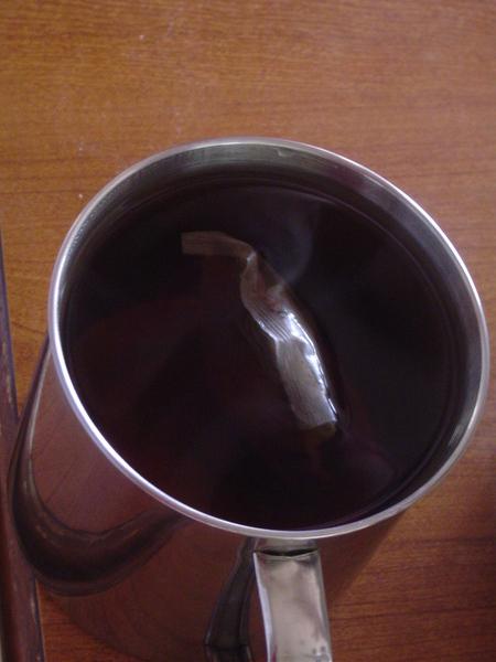 韩国大麦茶.JPG