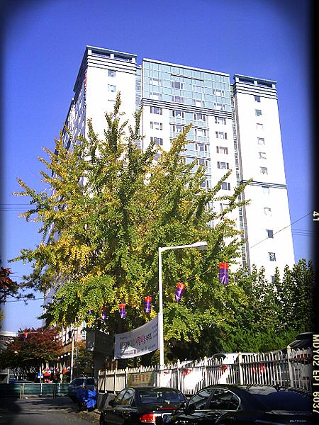 2012-10-31-16-05-34_deco