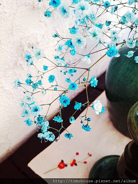 bleu fleur (5)