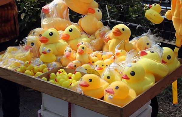 黃色小鴨38.JPG