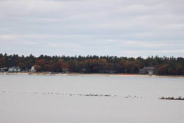 Tawas Point State Park18.JPG