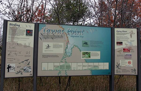 Tawas Point State Park20.JPG