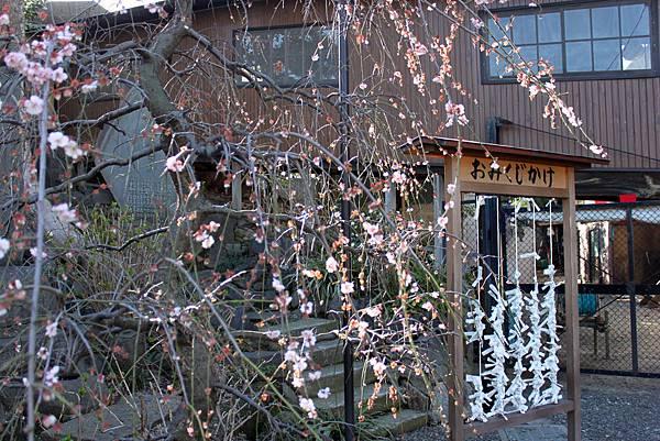 橫濱弘明寺4.JPG