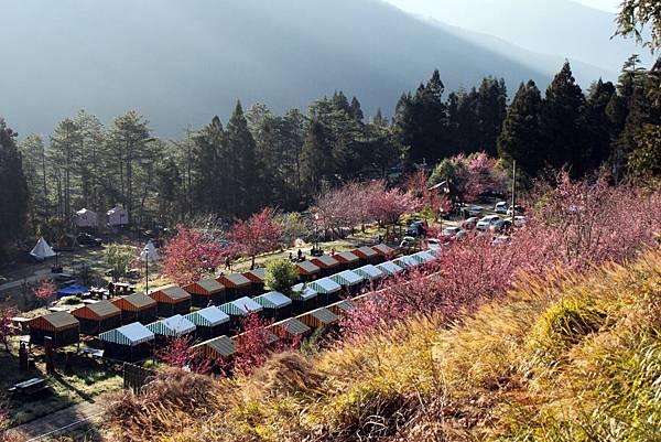 武陵露營7.JPG