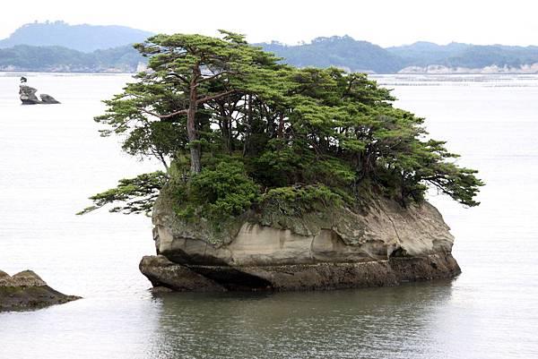 松島6.JPG
