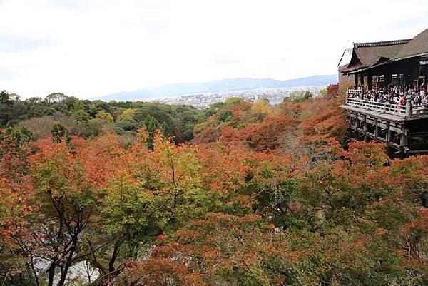 清水寺26.JPG