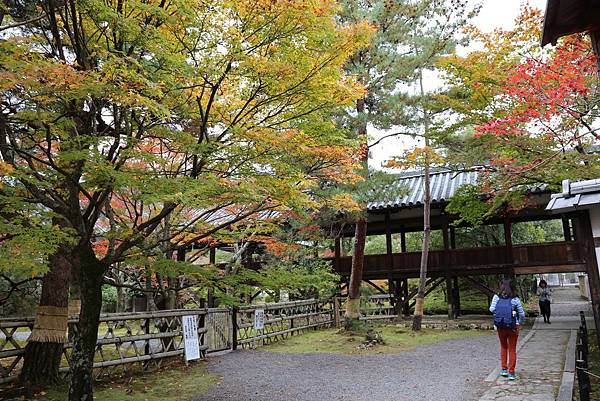 清涼寺4.JPG