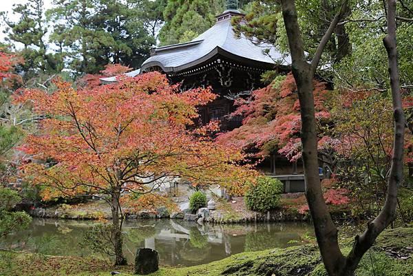 清涼寺7.JPG