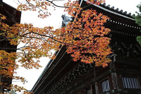 清涼寺11.JPG