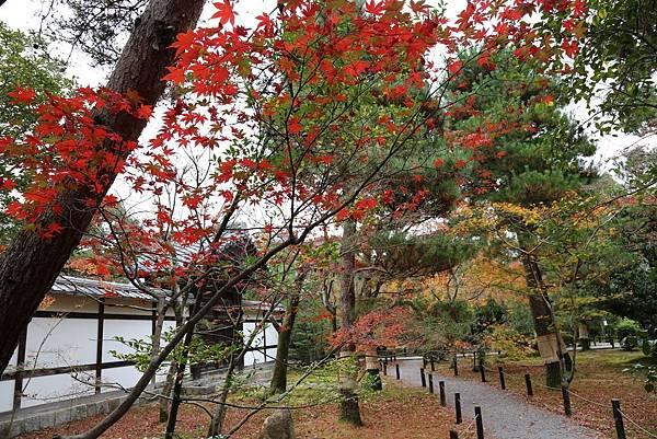 清涼寺12.JPG