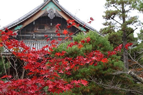 清涼寺19.JPG