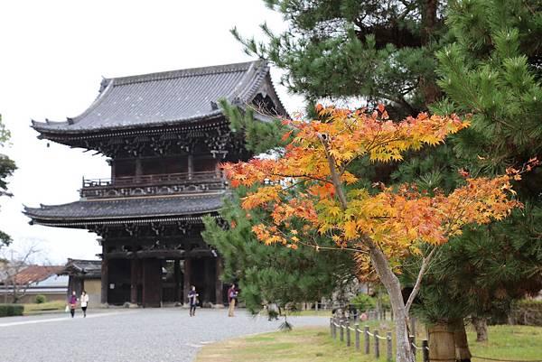 清涼寺34.JPG