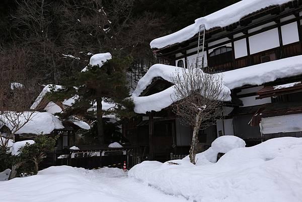 高山城山公園8.JPG