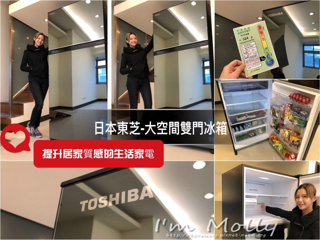 雙門冰箱/大空間大容量/快速冷凍/日本東芝Toshiba-1.JPG