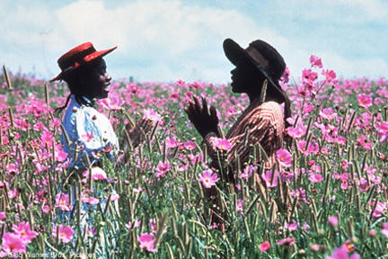 colorpurple1.jpg