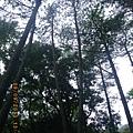 0909 Aowanda Park (20).JPG