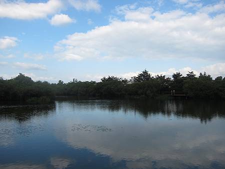 天光雲彩映在生態池畔,彷彿是人間仙境.JPG