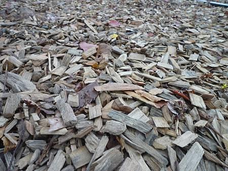 柔軟細碎的木塊步道方便行走,更可避免因泥地濕滑而摔跤的情況。.JPG
