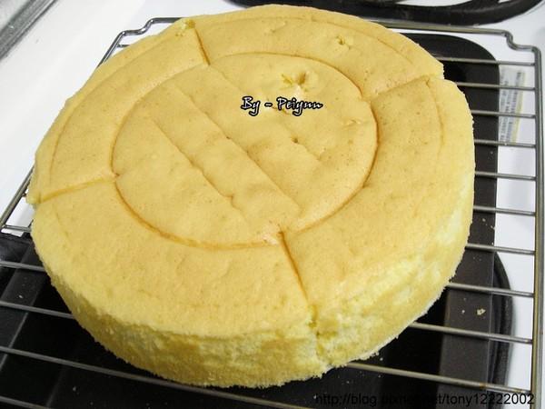 2008.01.17 海綿蛋糕(成品).jpg