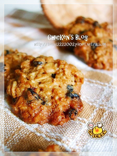 2010.08.06 Brown suger blue berry oats cookies6.jpg