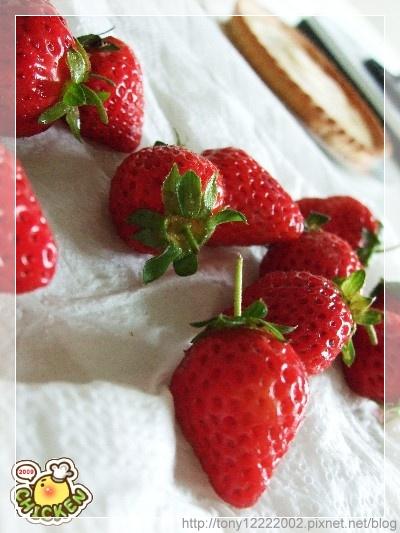 2009.02.21 兩盒八十元的草莓.jpg