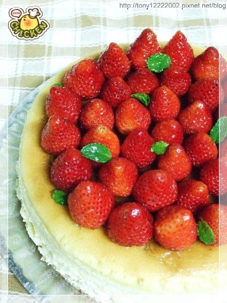 2009.03.08 草莓起士蛋糕5.jpg
