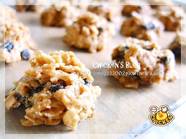 2010.08.06 Brown suger blue berry oats cookies5.jpg