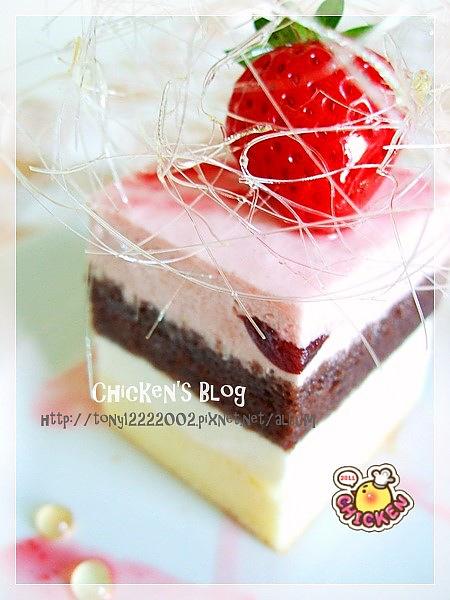 100.02.05 覆盆莓優格慕斯蛋糕8.jpg
