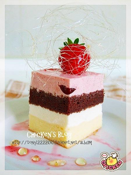 100.02.05 覆盆莓優格慕斯蛋糕7.jpg