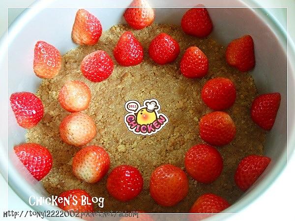 100.01.25 莓果生乳酪蛋糕4.jpg