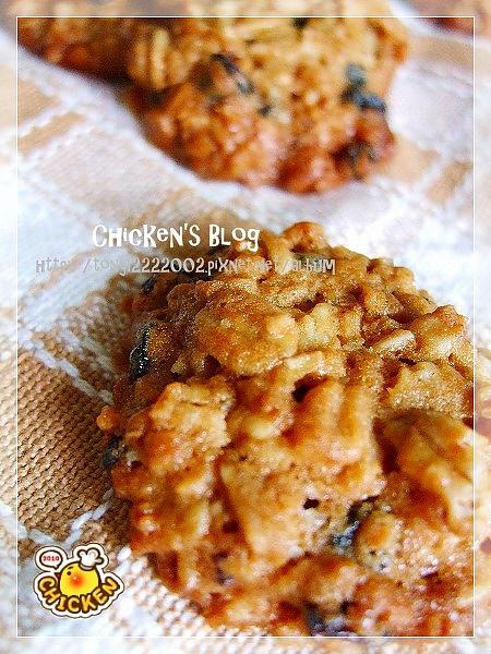 2010.08.06 Brown suger blue berry oats cookies7.jpg