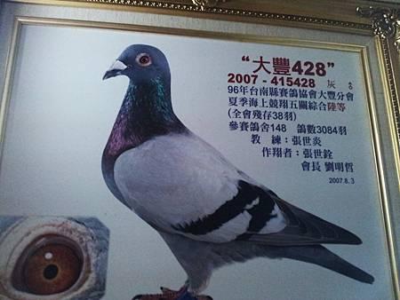 2007大豐夏五關6位