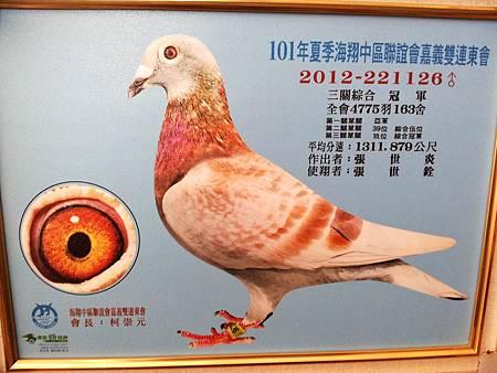 2012-221116紅斑 三關冠軍