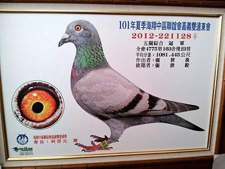 2012-221128暗灰 五關冠軍