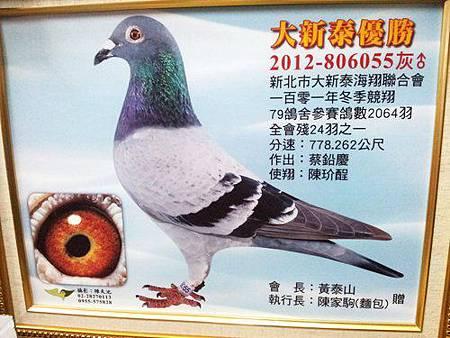 2012大新泰冬季北海入賞照