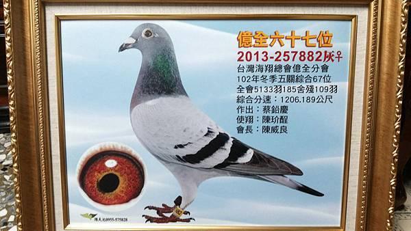 2013台北億全五關綜合67位入賞照