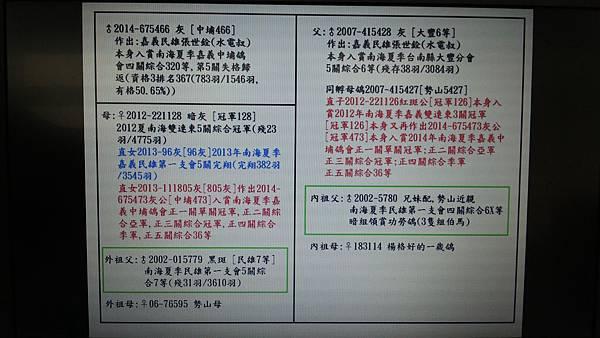 2014-675466灰公[中埔466]血統書