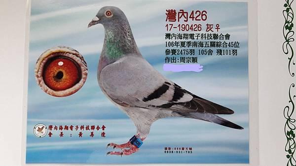 2017年灣內夏季5關綜合45位(26母)04.jpg