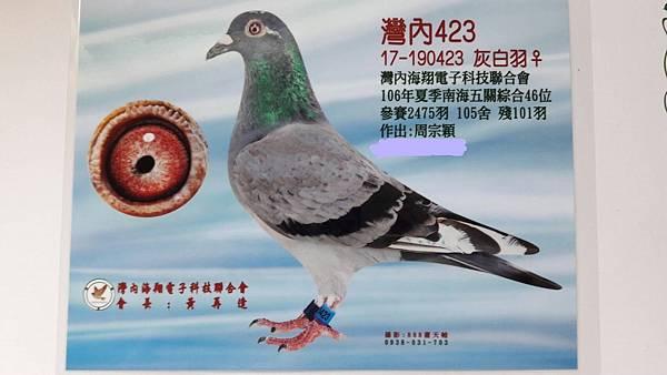 2017年灣內夏季5關綜合46位(23母)04.jpg