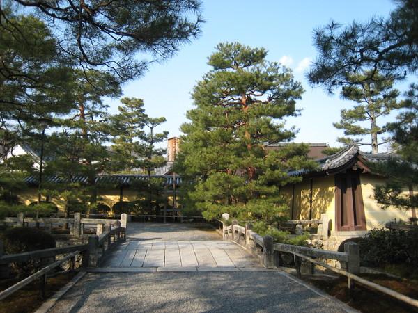大覺寺外一景