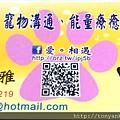 寵物溝通、能量療癒服務_蕭夙雅_0973-167-219