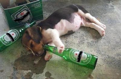 Image result for 酒醉