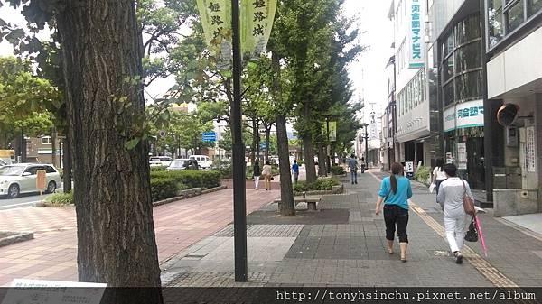 IMAG1146[1].jpg