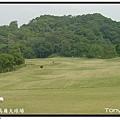 皇家高爾夫球場  IN 第15洞 PAR4.JPG