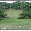 新竹新豐高爾夫球場 東區 第8洞 PAR3 148碼.JPG